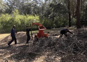 Three men went to mulch