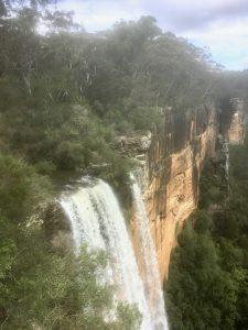 FItzroy Falls 2